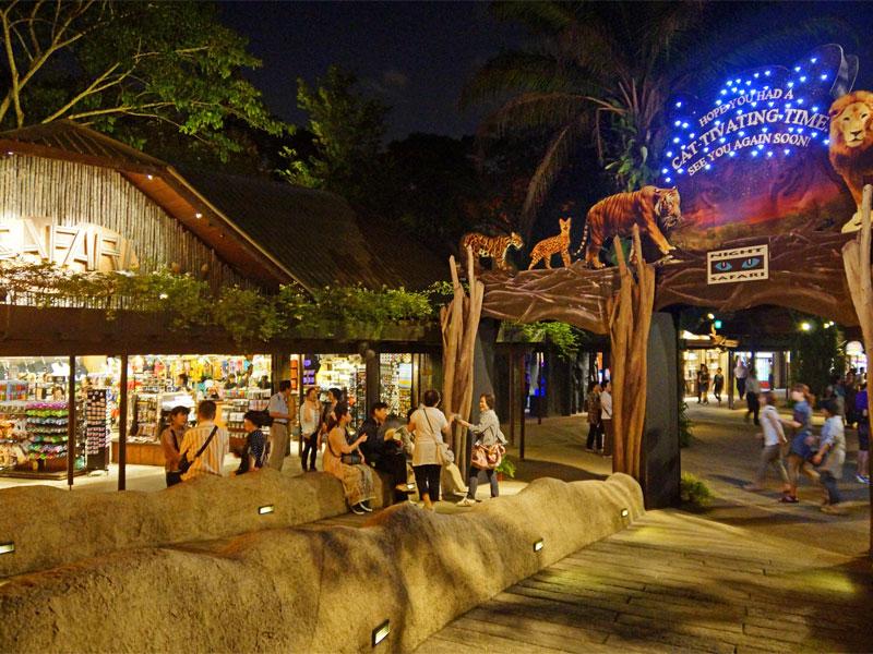 Ночное сафари в Сингапуре