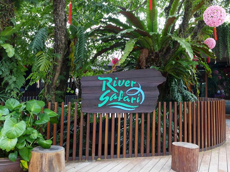 Речное сафари в Сингапуре - первый зоопарк такого типа в Азии
