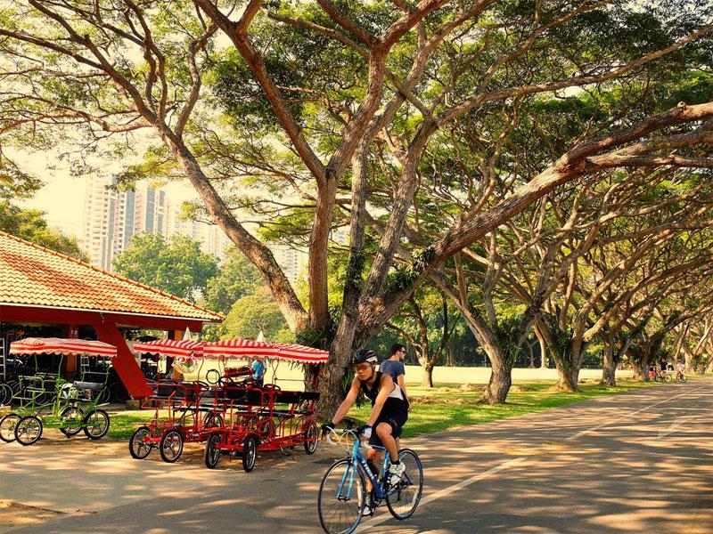 East Coast Park - идеально подходит для езды на роликах и велосипедах
