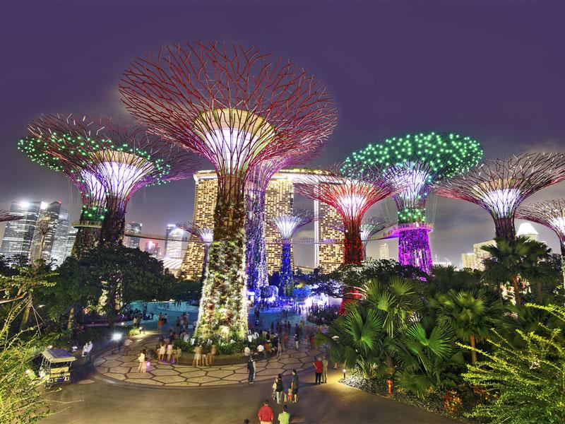 Садовая рапсодия раскрашивает деревья Gardens by the Bay всеми цветами радуги