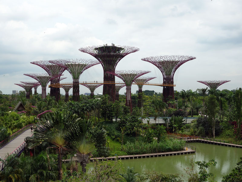 Сады Gardens by the Bay