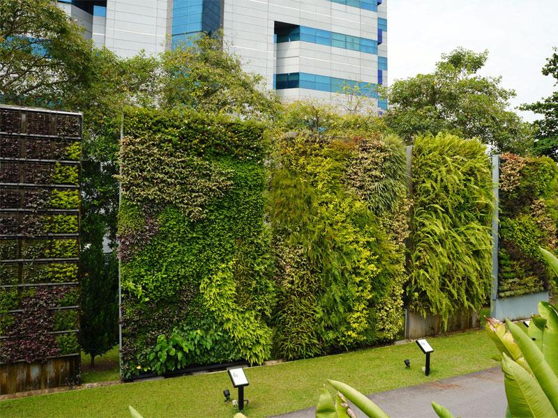 Хортпарк в Сингапуре