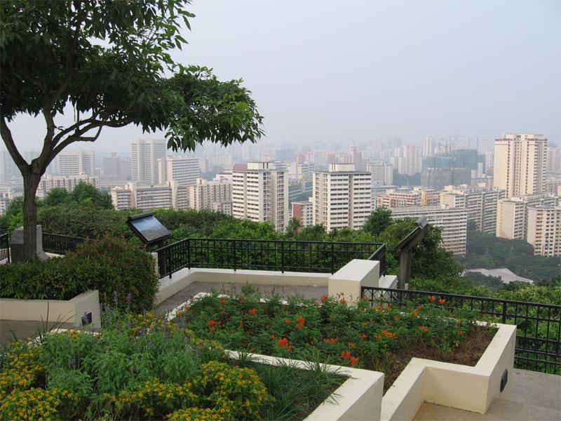 С обзорной точки на вершине Mount Faber Park открывается панорамный вид на весь Сингапур