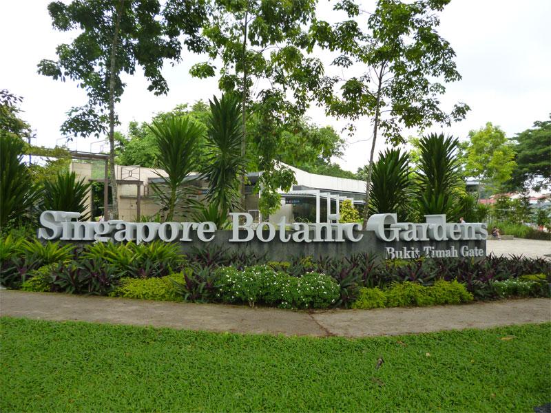 Ботанические сады - это старейший парк на территории Сингапура