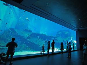 Океанариум S.E.A. Aquarium в Сингапуре