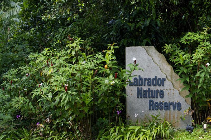 Природный заповедник Лабрадор в Сингапуре