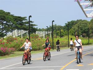 Где покататься на велосипеде в Сингапуре — три маршрута на любой вкус