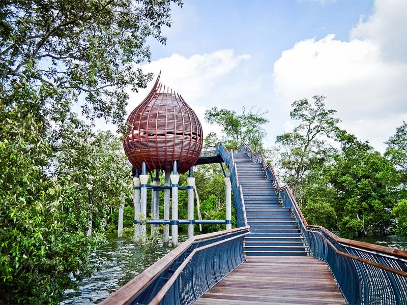 Природный заповедник Сунгей-Булох в Сингапуре